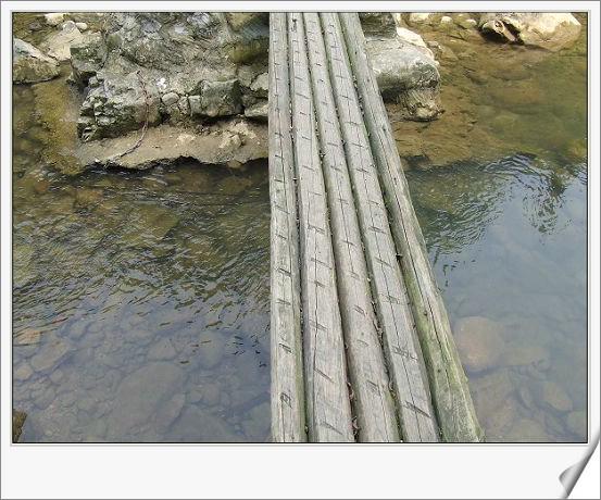 还是一根根木头搭建的小桥